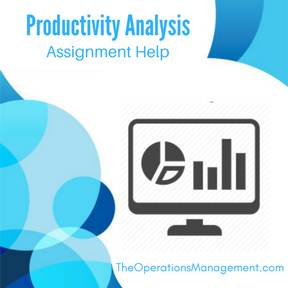 Productivity Analysis Assignment Help